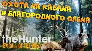 theHunter Call of the Wild #4 - Охота на кабана и благородного оленя