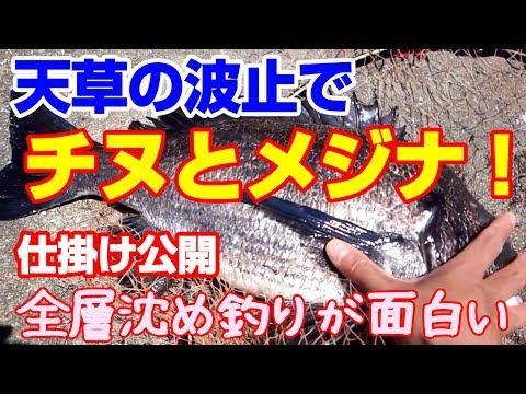 チヌフカセ釣り黒鯛全層沈め釣り時々メジナグレ上ダナ狙い|Japan Kumamoto
