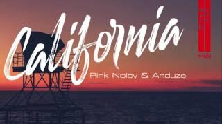 Скачать Pink Noisy Anduze California Official Audio Release