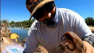 Pesca y Cosina 🔥Pez BASURA les disen los ago Chicharrones y pongo Camaras 😜 🦌🦃🐺