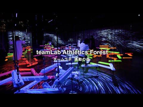teamLab Athletics Forest / チームラボ 運動の森