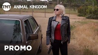 Animal Kingdom: This Season On (Season 4) | TNT