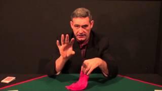 Video: silk to panties + dvd