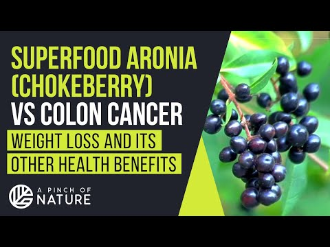 Superfood ARONIA (Chokeberry) vs Colon Cancer | Weight Loss and its other Health Benefits
