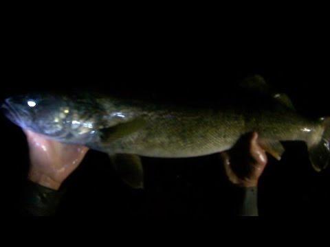 Lure Fishing 74 Small River Night Fishing For Big