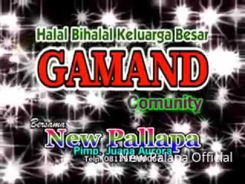 FULL KONSER NEW PALAPA Tahun Baru 2016  Live Gammand Community Pucak Wangi Pati