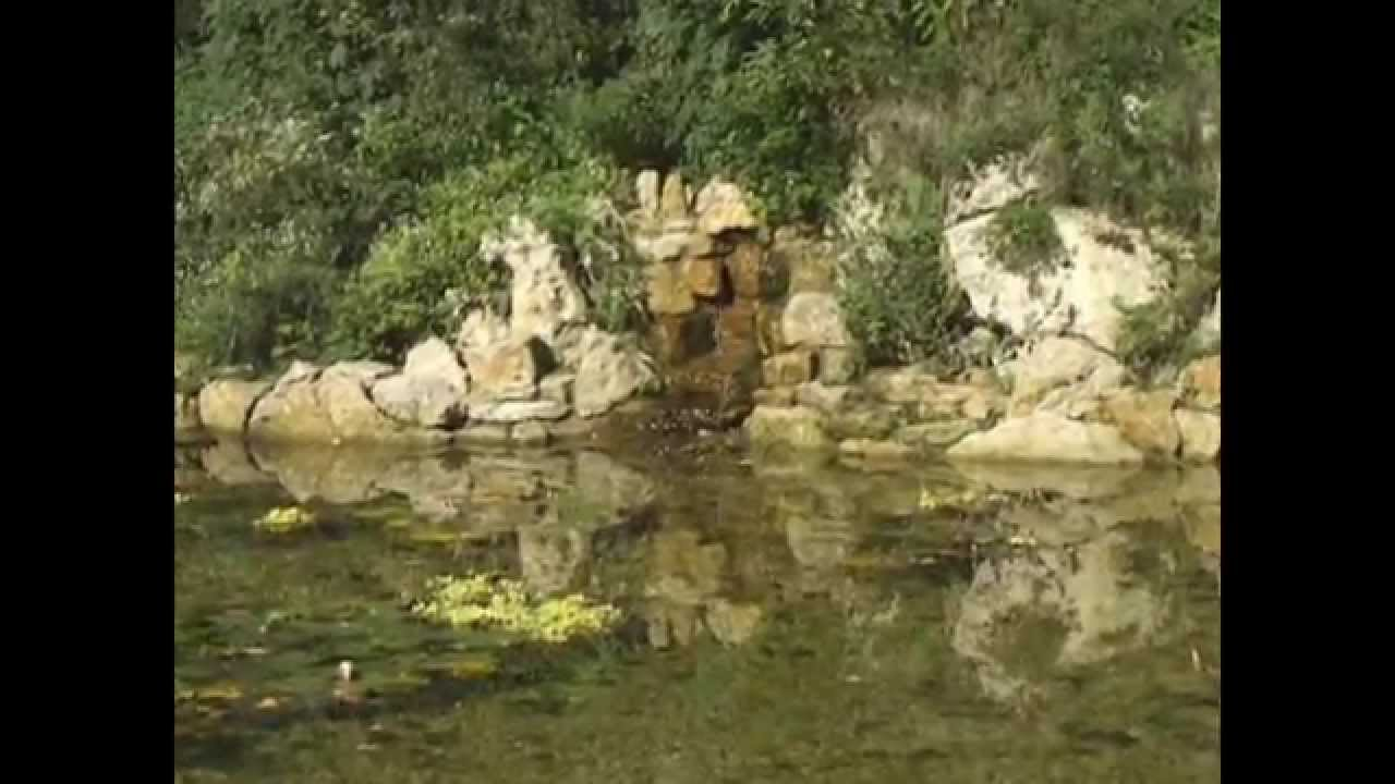Gartengestaltung wasserfall anlegen youtube for Gartengestaltung youtube