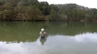 ウェイディングができてダブルハンドが振れる管理釣り場は関西ではここ...