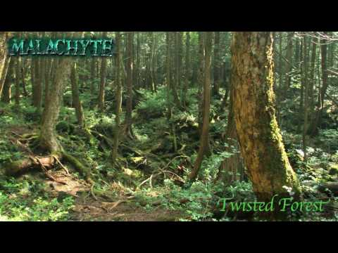 Malachyte - Twisted Forest