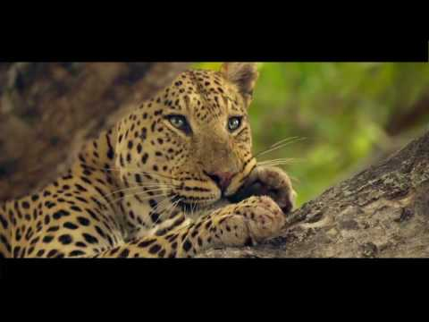 African Overland Tours .com Explore Uniquely