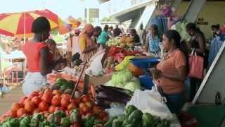 A Tour of Trinidad