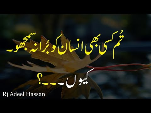 Tum Kisi Be Insaan ko Bura Na Samjho|Adeel Hassan|precious words|golden words|urdu quotation|quotes|