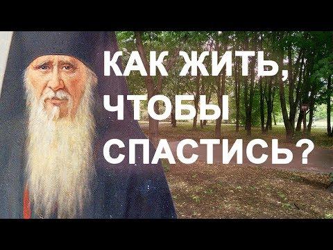 Господь всё устроит, только живи проще! Амвросий Оптинский. Как жить, чтобы спастись?