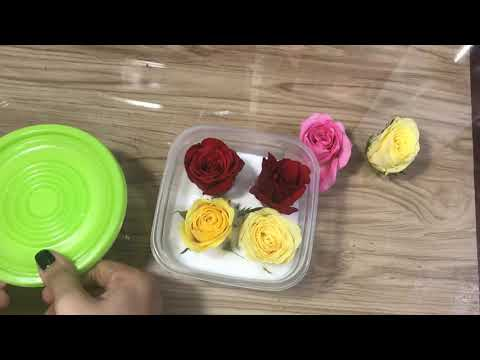 How To Dry Roses - DIY