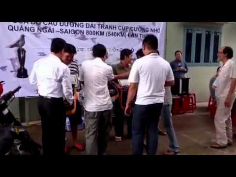 Trao giai Bo cau dua cup Cuongnho 800km Quang Ngai Sai Gon