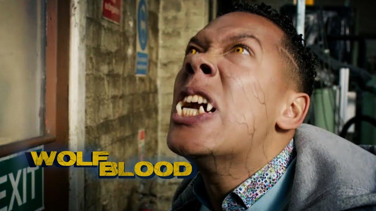 Download Sheep's Clothing    Season 4 Short Episode 7   Wolfblood