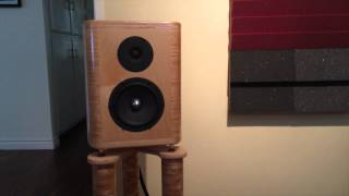 Diy Translam Speakers With Diy Audio Rack