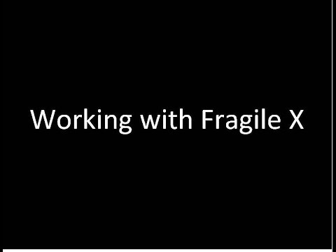 Working with Fragile X
