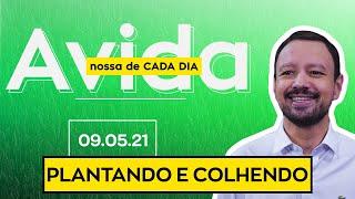 PLANTANDO E COLHENDO / A Vida Nossa de Cada Dia - 09/05/21
