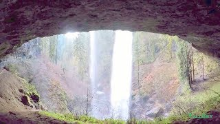 Virtual Hike: Walk to North Falls, Silver Falls State Park, OR