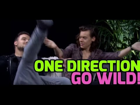 One Direction: Harry and Liam on their famous faces and Hollywood sick sign