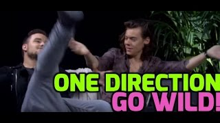 One Direction Harry and Liam on their famous faces and Hollywood sick sign