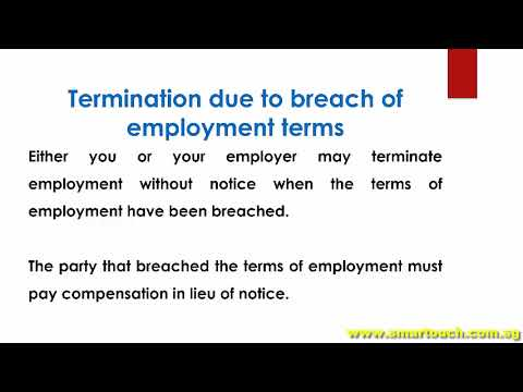Payslip Singapore  Termination Of Employment  Termination Without