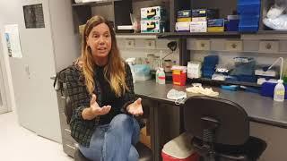 ¿Cómo son las vacunas para la COVID-19? - Pilar Moreno