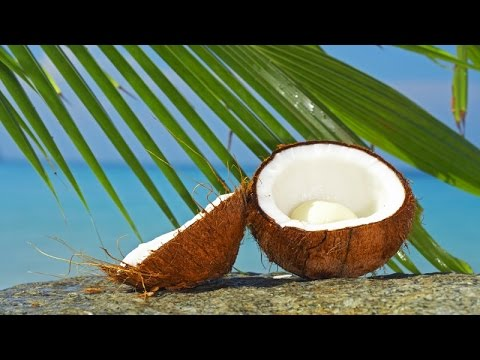 Hawaiian Instrumental Music - Coconut Lounge