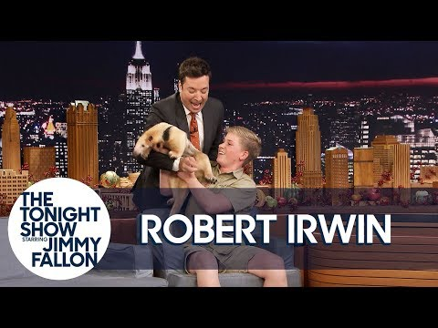 Download Youtube: Jimmy Gets Attacked by Robert Irwin's Anteater