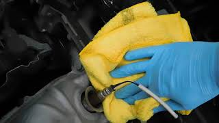 CLEANING CARS ENGINE WITH GRIOTS GARAGE ENGINE CLEANER