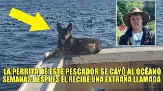 La perrita de este pescador se cayó al océano, semanas después recibe una extraña llamada telefónica