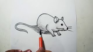 How to Draw A Rat || Easy Pencil Drawing