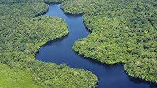 DOCUMENTAL, LA CUENCA DEL AMAZONA | EL RÍO MAS LARGO DEL MUNDO, 6 MIL KILOMETRO