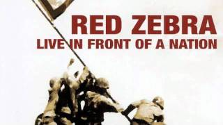 Red Zebra - Agent Orange