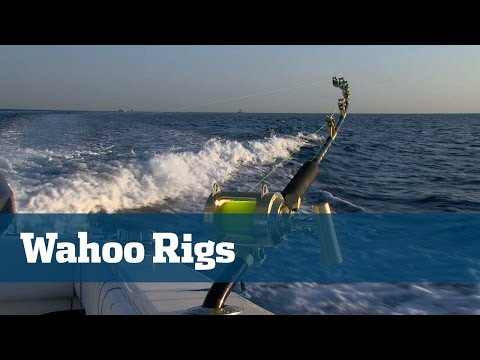Wahoo Fishing High Speed - Florida Sport Fishing TV Rigging Station