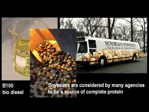 Mass Murder with Biofuels