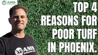 Top 4 Reasons for Poor Turf in Phoenix