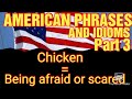 HOW TO LEARN AMERICAN PHRASES AND IDIOMS? PART 3:ENGLISH LESSON:VLOG#:49