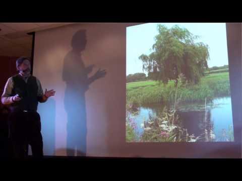 Power of trees | Jim Robbins | TEDxGreatFalls