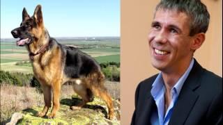 Панин с Собакой видео (обсуждение)