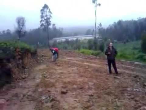 Reflorestação em Escariz I.mp4