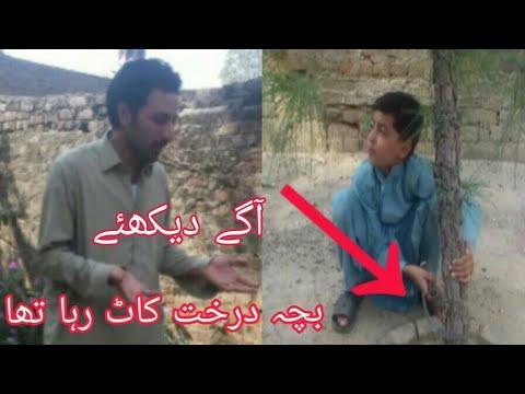 Pashto Funny Video پشتو مزاحیہ ویڈیو Gulab Vines