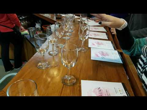 Chicago Michigan wine tour with 5 Star Limo Party bus rental
