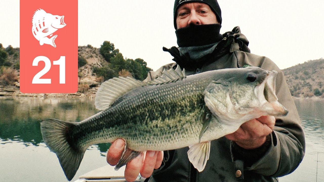 Youtube Channels für Angler | Fisch Ahoi