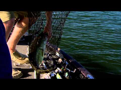 FLW Circuit Breaker | S01E06: Lake Chickamauga