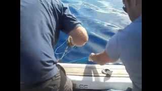 тенеріфе, океанська риболовля, російські морські екскурсії, канари