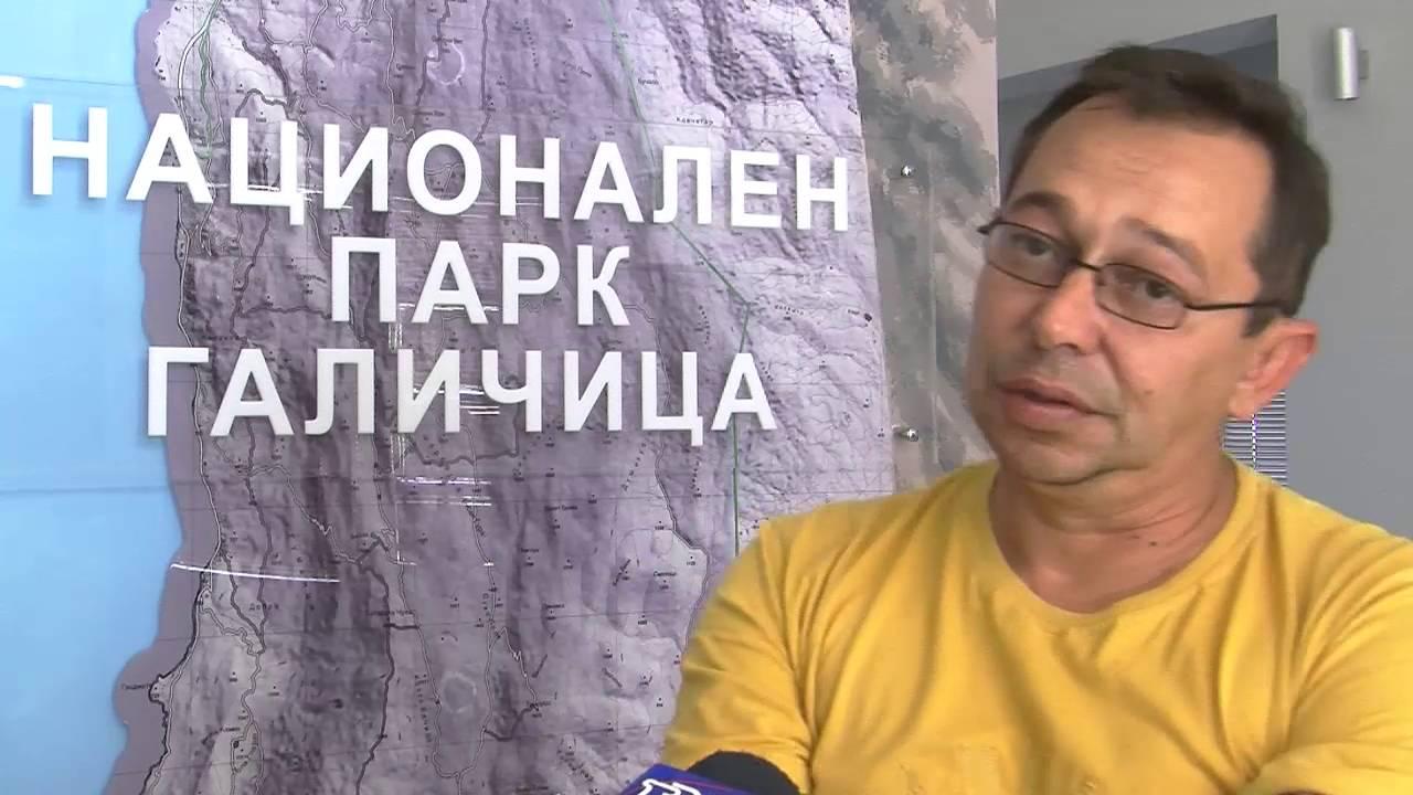 ТВМ Дневник 11 08 2016