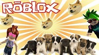 ⭐ BEST PET SHOP | ROBLOX ⭐