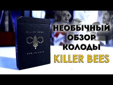 ЭЙНШТЕЙН И МЭДИСОН ЗНАЛИ! / ОБЗОР КОЛОДЫ